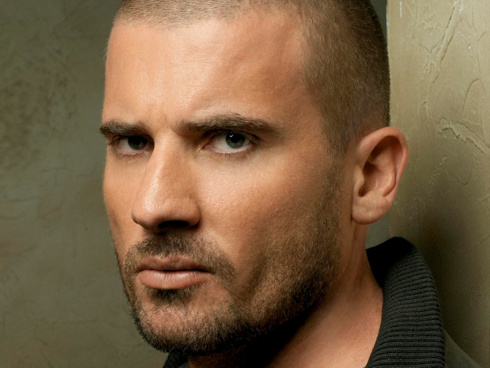 Dominic Purcell Cast I...