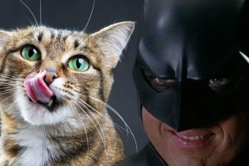 talking-comics-podcast-499-batman-loves-meow-mix